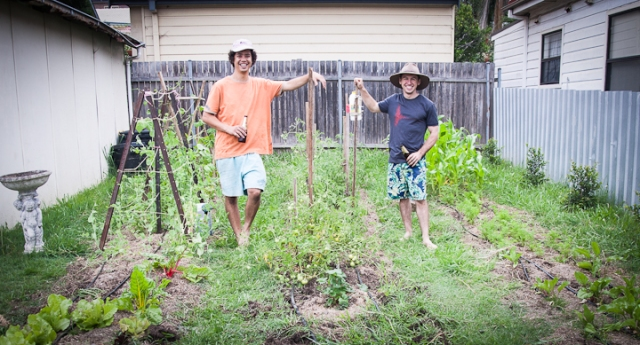 Before we started our veggie garden we were told it was going to require a lot of effort to grow organically. This is not true. The main factors to consider are efficiency and ease of watering, efficient mulching (reduced weeding/water loss) and diverse crops.